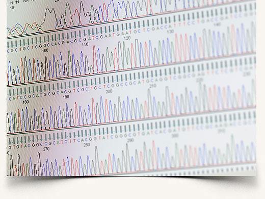 Fetal DNA testing in Maternal Blood | Center for